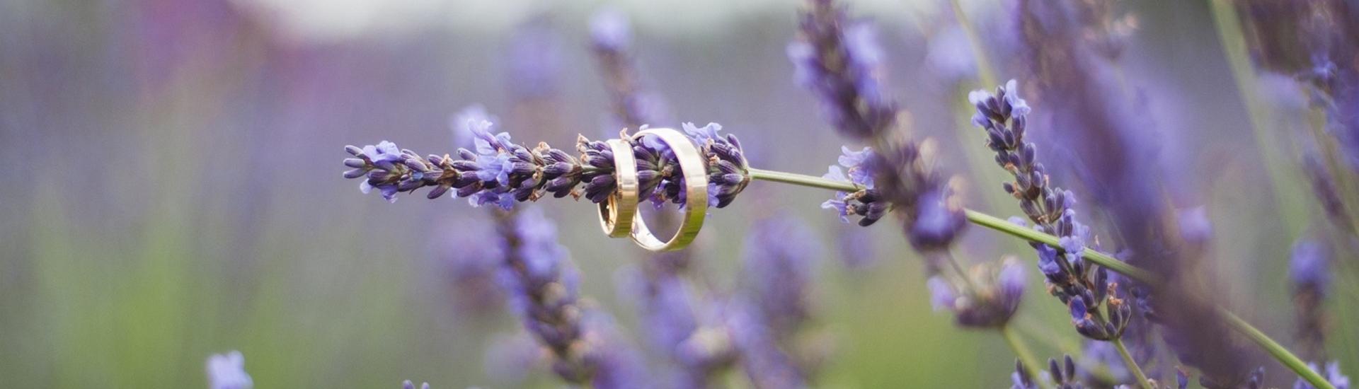 Ewa i Łukasz – plener ślubny